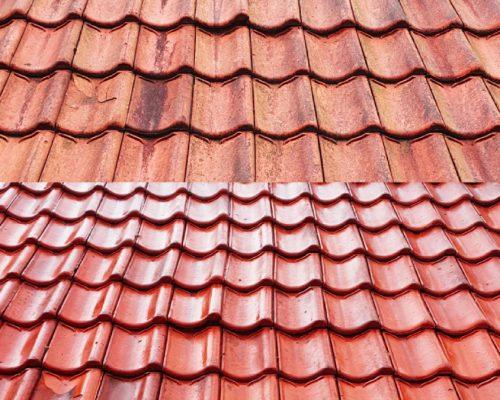 dakpannen-reiniging